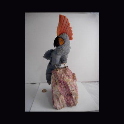 Perroquet en Pierre de Dumortierite